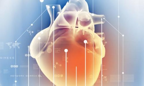 Global longitudinal strain: A new gold standard for assessing heart failure?