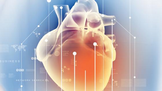 Global longitudinal strain: A new gold standard for assessing heart failure?