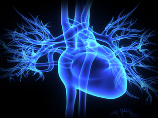 Imaging modalities differ in assessing key heart metric